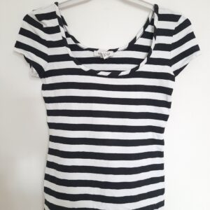 Zebra Stripes Lady's T-shirt (Small)